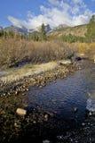 Поток горы в падении Стоковая Фотография