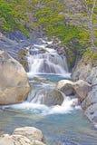 Поток горы в патагонских Андах стоковое изображение rf