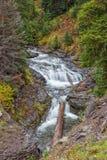 Поток горы в падении Стоковые Изображения