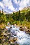 Поток горы в польских горах стоковые изображения rf