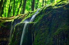Поток горы в солнце на долгой выдержке с красивым tra Стоковое Изображение