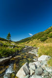 Поток горы в Transylvanian Альпах Стоковые Изображения