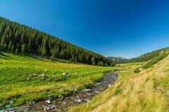 Поток горы в Transylvanian Альпах Стоковые Фотографии RF