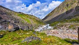 Поток горы источника Ландшафт горы лета Стоковое Изображение RF