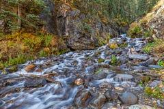 Поток горы Колорадо в осени Стоковая Фотография