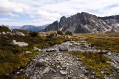 Поток горы, около заводи Downton, Pemberton, Британская Колумбия Стоковое Изображение
