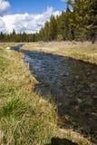Поток горы Орегона Стоковая Фотография