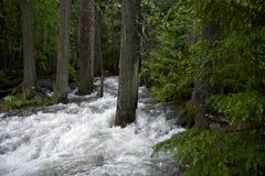 Поток горы переполнения Стоковая Фотография RF