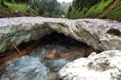 Поток горы, поток горы alatau zailiyskiy Стоковая Фотография