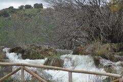 Поток горы, поток затопленный путь закрытая тропка Национальный парк Ruidera Хитроумный поток Стоковые Изображения RF