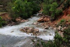Поток горы спеша вниз с холма Стоковые Фотографии RF