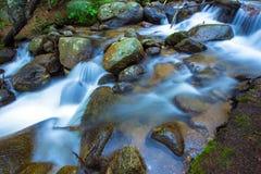 Поток горы утесистый Стоковое Изображение