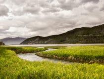 поток горы утесистый Стоковая Фотография