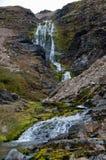 Поток горы холодной воды стоковое изображение rf