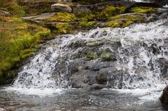 Поток горы холодной воды стоковое фото rf