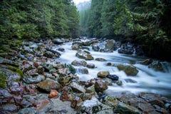 Поток горы - штат Вашингтон стоковые фотографии rf