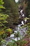 поток горы Стоковая Фотография RF