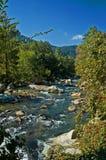 поток горы Стоковое Изображение