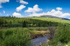 Поток горы Coolorado Стоковое Изображение RF