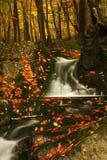 поток гор осени гигантский Стоковое Изображение