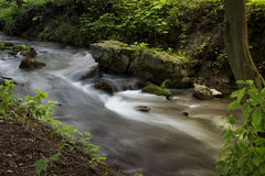 Поток леса бежать над мшистыми утесами в утре Длинный exp Стоковое Фото