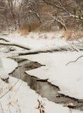 Поток зимы Стоковая Фотография RF