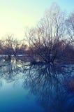 Поток зимы стоковое изображение rf