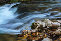 Поток и водопады горы в лесе весной стоковое фото rf