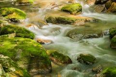 Поток и мох горы покрыли утесы стоковая фотография rf