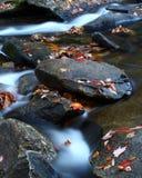 поток Каролины осени северный западный стоковое изображение rf