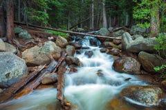 Поток Колорадо горы Стоковые Изображения