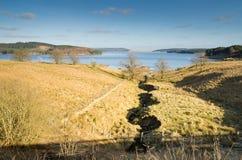 Поток к воде Kielder Стоковая Фотография
