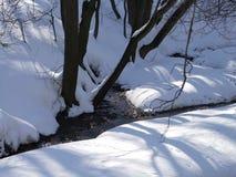 Поток леса среди деревьев в зиме стоковые изображения rf