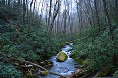 Поток национального парка Джойса Kilmer Стоковые Изображения RF