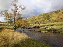 Поток национального парка участков земли Йоркшира Стоковое Изображение RF
