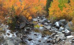 Поток осени на северном озере Калифорнии стоковые фотографии rf