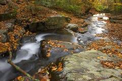 поток осени Стоковые Фото