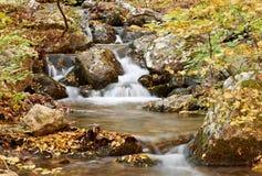 поток пейзажа осени стоковое фото rf