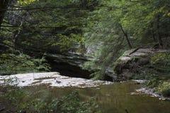 Поток, пещера золы, Огайо стоковые фотографии rf