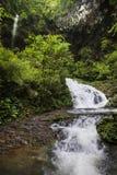 Поток промоины в черной долине горы стоковые изображения rf