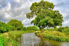 Поток пропуская через типичную английскую сельскую местность стоковое фото rf