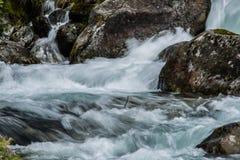 Поток пущи над мшистыми утесами Стоковая Фотография
