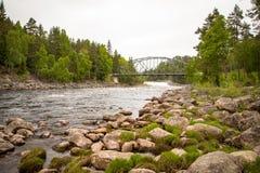 Поток реки в скалистой окружающей среде в лесе с мостом на заднем плане Стоковые Фото
