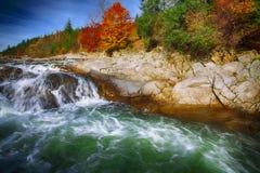 Поток реки горы быстрый пропуская воды в утесах на autu стоковое фото