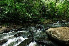 Поток реки через камни на тропическом лесе с кустовидным деревом в стороне Стоковое Изображение