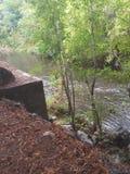 Поток реки стоковые изображения rf