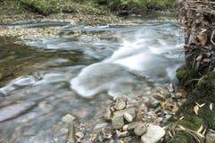Поток реки Стоковое Изображение