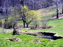 поток сельской местности Стоковые Изображения