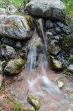 Поток среди камней и мха Стоковая Фотография