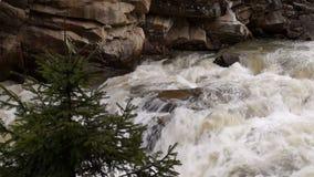 Поток с водопадом видеоматериал